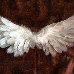 social impact angel